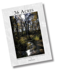 36 Acres Cover